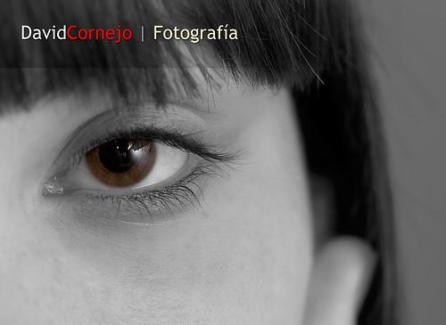 www.davidcornejo.es