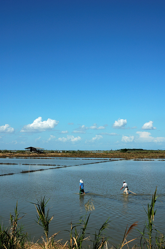 Candaba Fishermen