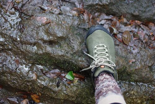 091121 天園ハイキングコース03