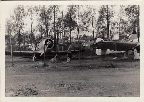 Warbird picture - Boomerang and Firefly with Cadet