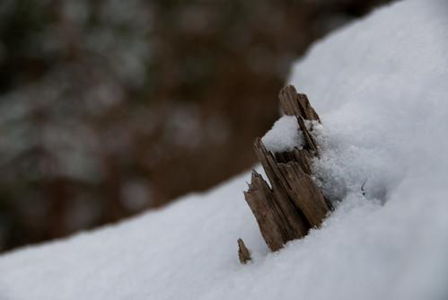 Schneedecke