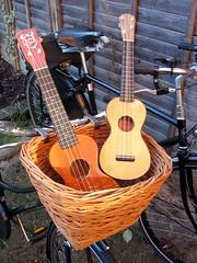 Our Crossett Ukuleles (Bicycle and Ukulele) Tags: bicycle ukulele raleigh pashley
