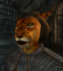 male Khajiit 00 default