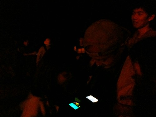 katharine娃娃 拍攝的 6看相機捕捉到的台北樹蛙。