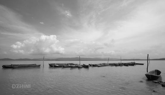 BW harbor
