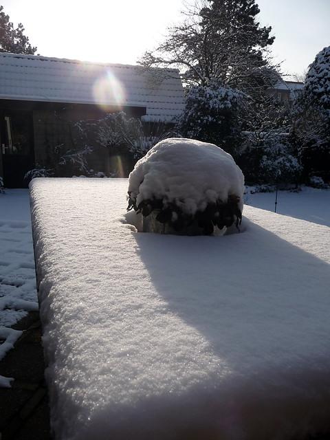 Als sneeuw voor de zen ...