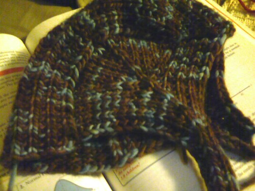 Froggie's own malabrigo aviator hat! Too bad it's too small. :(