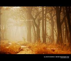 The Twilight (Smevin Paul - Thrisookaran !! www.smevin.com) Tags: