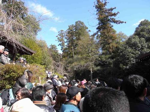 飛鳥坐神社(おんだ祭)@明日香村-02
