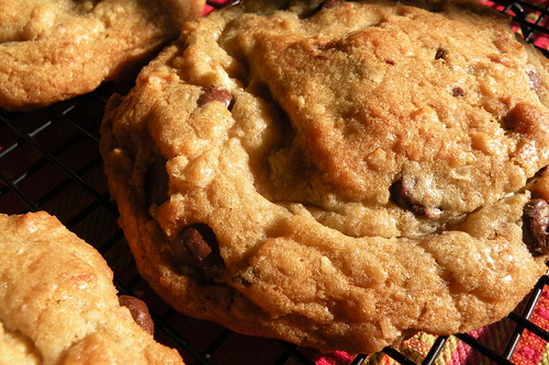 Recipe: Coconut Macadamia Chocolate Chip Cookies blog image 1