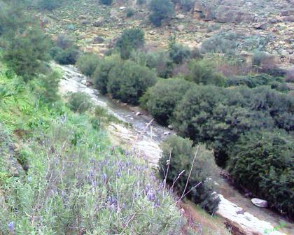 Oued Jaouani Beni Znassen واد الجعواني جبال بني يزناسن