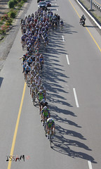 World Cycling Champions in TOUR OF OMAN (Mct-Enigma) Tags: world cyclists tour gulf champion oman muscat