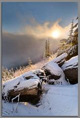 Sunrise in the Clouds... (Andrew Kumler) Tags: clouds oregon forest sunrise nikon andrew national sunburst freshsnow umpqua d300 1224mmf4 kumler
