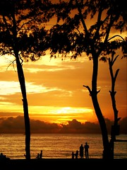 "Featured in ""Better Photography"" (aroon_kalandy) Tags: family trees light sunset sea vacation orange sun india seascape love beach nature beautiful beauty yellow landscape fun creativity lights evening landscapes twilight couple asia tramonto mare adobephotoshop artistic sony awesome kerala romance glorious fantasy shade greatshot impressions concept lovely sole outing lightpainter naturelovers indiansunset calicut kozhikode sihloutte supershot topshots beautifulshot anawesomeshot malayalikkoottam worldwidelandscapes natureselegantshots sonyh50 aroonkalandy theoriginalgoldseal flickrsportal"