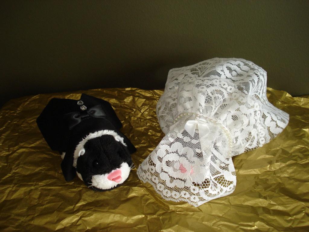 Zhu Zhu Pets Wedding Dress Tuxedo Set Zhu Zhu Wedding day Clothes