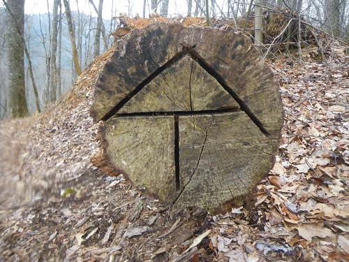 Log AT