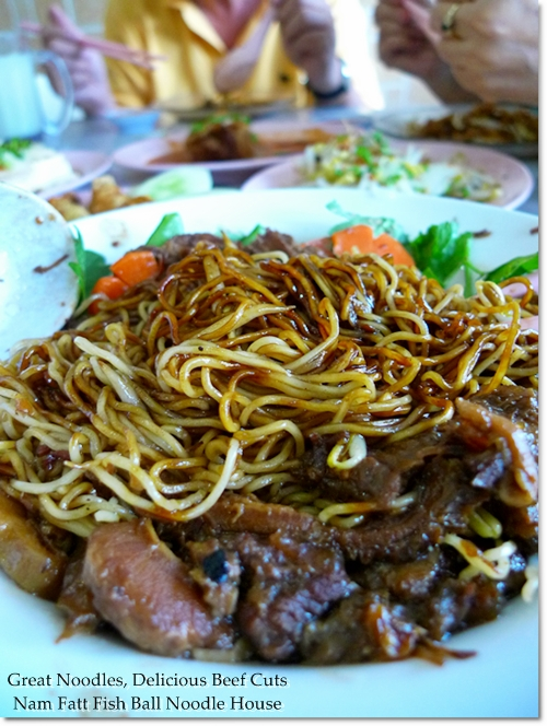 Bouncy Egg Noodles with Beef