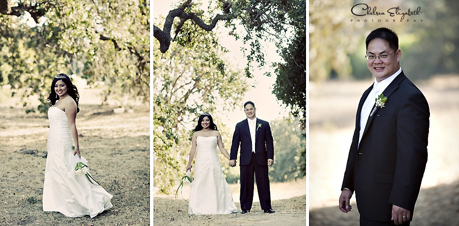 vintage bride and groom oak tree wedding portraits picture