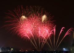Glasgow Green fireworks 2 - 2009 (itsavanthing) Tags: guyfawkes bonfirenight november5th glasgowgreenfireworks2009