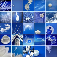 Royal Blue & White (LHDumes) Tags: blue white fdsflickrtoys mosaic blueandwhite royalblue royalblueandwhite