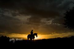 sculpture by the sea 09 (PollyStreet (fiona)) Tags: sunset horse bondi silhouette backlit sculpturebythesea rider sxsbondi