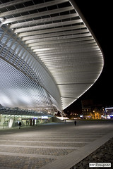 Lige-Guillemins (rbpdesigner) Tags: bridge slr station arquitetura architecture night train canon lights luces europa europe nightshot belgium belgique gare parking belgi ponte noturna trainstation calatrava nocturna getty pont noite 5d luzes trem onsale liege stazione nocturne estacin luik tgv santiagocalatrava gettyimages nachtaufnahme lige estao belgien imagebank belgio estacionamento blgica thalys avenuedelobservatoire lieja lttich highspeedtrain  famousplace canoneos5d lige trembala  bancodeimagens internationallandmark traingrandevitesse koninkrijkbelgi royaumedebelgique knigreichbelgien ldje ligeguillemins venda velhomundo tremdealtavelocidade garedeligeguillemins velhocontinente estaodelige estacindeliejaguillemins reinodablgica santiagopevsnercalatravavall