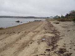 P5230004 (Massachusetts Dept. of Environmental Protection) Tags: 2003 beach water sand massachusetts release cleanup oil oily response oilspill contamination buzzardsbay emergencyresponse bouchardoilspill divisione1