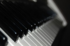 SOOC (jolyssuh) Tags: blackandwhite music white black blur keys asian cool keyboard bokeh piano desaturation gradual