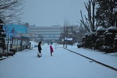 Jocs de neu al campus