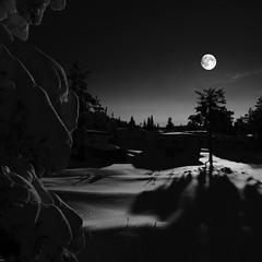 Liatoppen by night December 09 (Odd :-)) Tags: winter moon mountain snow nature norway night landscape norge nikon scenery action norwegen caravan scape kongsberg landskap blefjell buskerud d5000 theunforgettablepictures tup2 liatoppen twphch twphch034