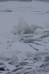 Micro-iceberg (Job) Tags: winter ice ijs markermeer oostvaardersdijk