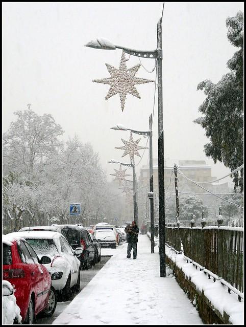 Estrellas nevadas