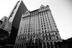 NYC_61 Plaza Hotel (Heather Rocco) Tags: trumpplaza solowbuilding newyorkmanhattanarchitectureblackwhite
