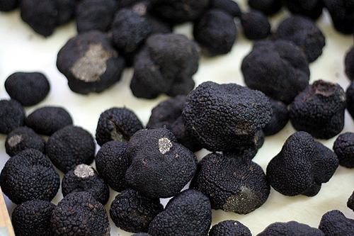plenty of black truffles