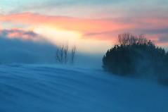 Light swiftly fading... (deanspic) Tags: winter sunset snow ontario twilight wind quote windswept drift stlawrenceriver longsault westernsky longsaultparkway parksofthestlawrence panoramafotogrfico hoopleisland frederickgeorgescott