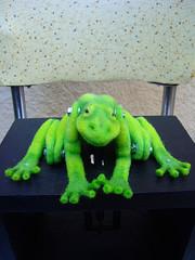 Frog Automaton  3