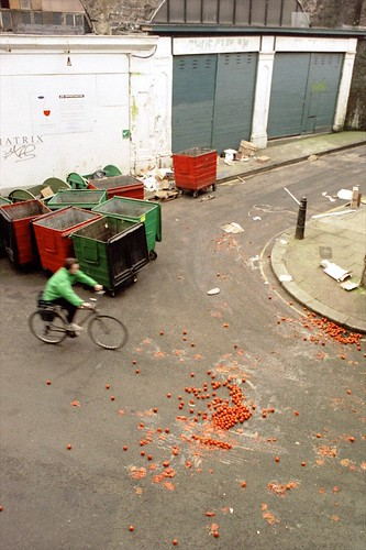 Bike vs Tomatoes