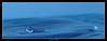 Trou bleu troublant (wautierp) Tags: nikon eau lumière bleu goutte d300 acdsee gélatine troubleutroublant