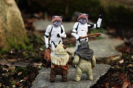 Stormtrooper 365