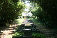 Where I was eaten alive by mosquitoes! (Deadbeatdad) Tags: srilanka shrubbery bevisbawa briefgarden