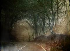 Carretera secundaria ...   secondary road ... (tan.solo_milenia .) Tags: shining cityart awardtree beyondclick artistictreasurechest netartii
