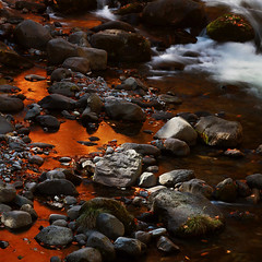 Melting Gold In Autumn Stream (andyyleung) Tags: autumn pointofview 1001nights soe dsa musictomyeyes naturesfinest musicfriends supershot risingstar soulscapes passionphotography photographicexcellence mywinners abigfave shieldofexcellence colorphotoaward ultimateshot flickrdiamond keepyoureyesopen majesticnature kissedbylight ciritbestofyours theunforgettablepictures flickridol goldstaraward yourperferredpicture zuzkasfaves seasonsmagic guggenheimgallery yourwonderland flickrvault selectbestexcellence sbfmasterpiece naturesgoldenwings thebattleofbritainawards flickrsgottalent eliteflickridol topseveninvited invitedkunstgriffe goldsealingshappyfeeling peacetookovermyheart photosscansfrontieres enerigiapostivia galleryoffantasticshots