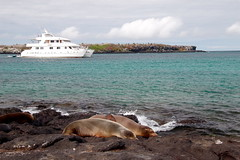Seaman II - Islas Plazas - Galapagos Islands (Roubicek) Tags: vacation holiday ecuador honeymoon galapagos equador seaman galapagosislands seaman2 islasplazas seamanii