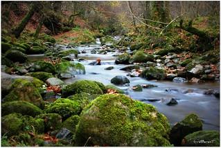 Un rio de sueños