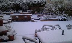 Snow in December 2009 (1)