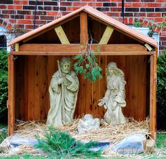 O' Holy Night (CMesker) Tags: christmas babyjesus nativityscene ansh scavenger12