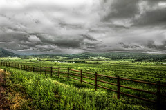 Green days gone bye (Tom Herlyck) Tags: green grass clouds fence colorado excellent beulah pueblocounty tonemapped qtpfsgui pinnaclephotography