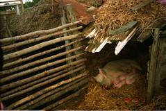 09_Kunhe (Hakatani Tenfu) Tags: china 2002 august  kina chine   tiongkok tsieina chinska  chiny  in  hiina  trungquc  daur kinija  na antsn    dngguk chngkoet    n cheenae  tsiiyiishbizdinibikyah