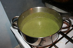 """Souper Green stuff"" after"