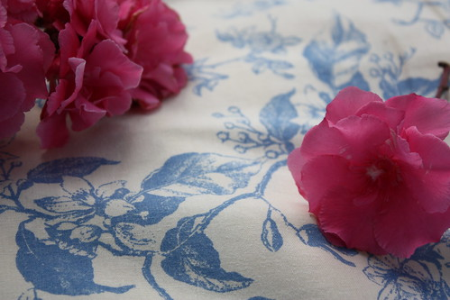 Colour + Colour Week 4: Blue and Pink